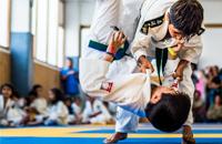 A Turma dos Judokinhas