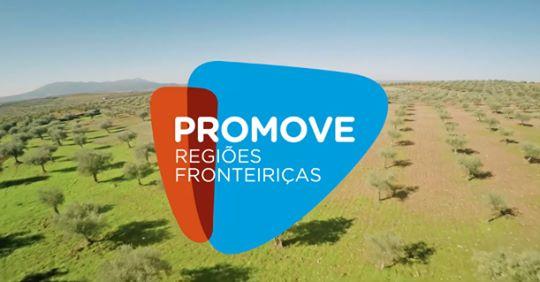 2ª edição do Programa Promove | Banco BPI