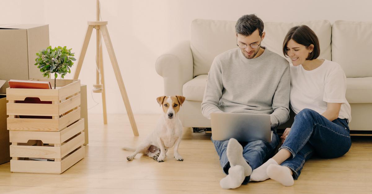 BPI lança contratação 100% digital de seguros | Banco BPI