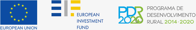 670x103_logos_european-union_european-investment-fund_pdr2020